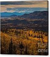 Taiga In Fall Canvas Print