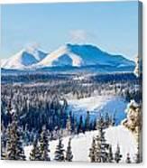 Taiga Winter Snow Landscape Yukon Territory Canada Canvas Print