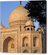 Taj Mahal In Evening Light Canvas Print