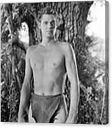 Tarzan The Ape Man, Johnny Weissmuller Canvas Print