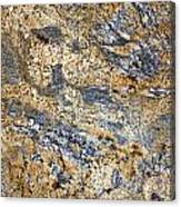 Texture Of Marble Background Closeup  Canvas Print