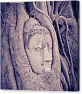 The Ancient City Of Ayutthaya Canvas Print