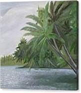 The Backwaters Canvas Print