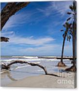 The Beach At Hunting Island State Park Canvas Print