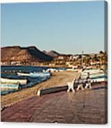 The Beachside Strolling Malecon Canvas Print
