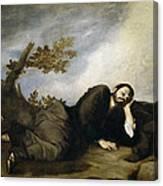 Jacob's Dream Canvas Print