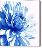 The Blue Dahlia Flower Canvas Print