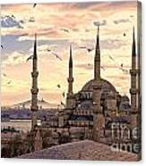 The Blue Mosque - Istanbul Canvas Print