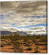 The Desert Southwest  Canvas Print