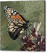 The Monarch Painterly Canvas Print
