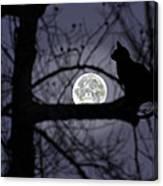 The Moon Watcher Canvas Print