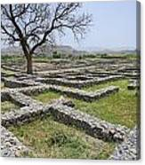 The Ruins Of Sirkap City At Taxila In Pakistan Canvas Print