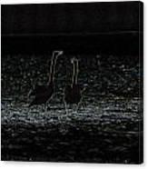 The Swan Of Tuonela Canvas Print