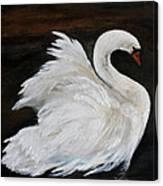The Swans Of Albury Manor I Canvas Print
