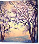 The Yesterday Bench Canvas Print