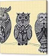 Three Owls On A Branch Canvas Print