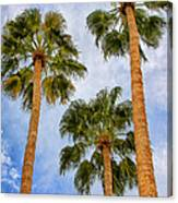 Three Palms Palm Springs Canvas Print