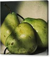 Three Pears Green Canvas Print