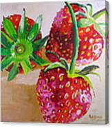 Three Strawberries Canvas Print