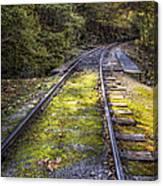 Tracks Along The River Canvas Print