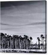 Tranquil Hammock Canvas Print