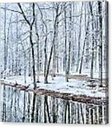 Tree Line Reflections In Lake During Winter Snow Storm Canvas Print