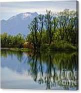Trees And Lake Canvas Print
