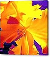 Tulip 6 Canvas Print