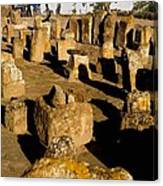 Tunisia. Carthage. Tablets In Tophet - Canvas Print