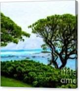 Turtle Bay View Canvas Print