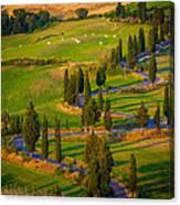Tuscan Road Canvas Print