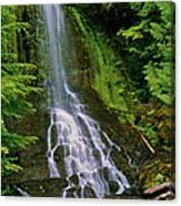 Twin Falls Creek Mount Rainier Canvas Print
