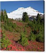 Usa, Washington State, Mount Baker Canvas Print