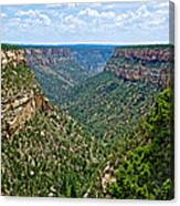View From Sun Temple In Mesa Verde National Park-colorado  Canvas Print