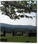 Vineyards In Va - 12125 Canvas Print
