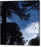 Volcano In Patagonia, Argentina Canvas Print