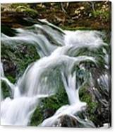 Water Fall 1 Canvas Print