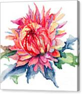 Watercolor Illustration With Beautiful Flowers  Canvas Print