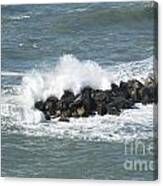 Wave On The Rocks Canvas Print
