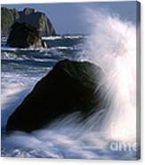 Waves Breaking On Shore Canvas Print