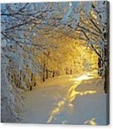 When Snow Falls Nature Listens Canvas Print