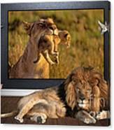 While The Lion Sleeps Tonight Canvas Print