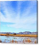 White Water Draw Preserve Canvas Print