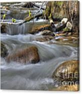 Whites Creek Canvas Print