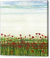 Wild Poppies Corbridge Canvas Print