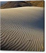 Wind Traces At The Desert Canvas Print