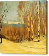 Winter Near Montreal Canvas Print