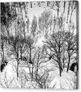 Winter Scene Shiga Japan Canvas Print