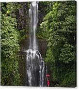 Woman With Umbrella At Wailua Falls Canvas Print