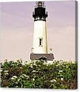 Yaquina Lighthouse In May Canvas Print